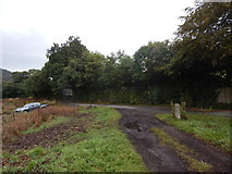 SX4764 : Track back onto the road by Hamish Griffin