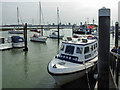SU6101 : Waterbus, Portsmouth Harbour, Portsmouth, Hampshire by Christine Matthews