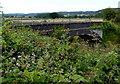 ST5069 : Brambly view of a railway bridge, Flax Bourton by Jaggery