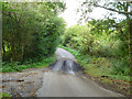 SP9201 : A damp dip on Little Hundridge Lane by Robin Webster