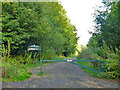 SU9399 : Track into Weedon Hill, Forestry Commission by Robin Webster