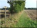 TM3462 : Footpath Junction by Keith Evans