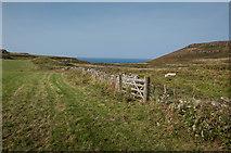 NM3348 : Pasture near Haunn by Tom Richardson