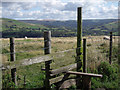 SJ9982 : Wooden stile by Stephen Burton
