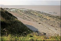 ST1444 : Wave-cut platform near Quantock's Head by Derek Harper