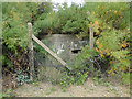 TM3337 : Type FW3/22 pillbox protecting Bawdsey Manor by Adrian S Pye