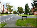 SU8851 : Looking east on Deadbrook Lane by Shazz