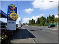 N7312 : R445, Kildare by Kenneth  Allen