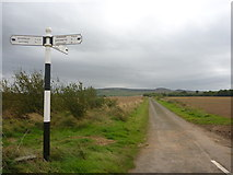 NT5166 : Rural East Lothian : Road Junction West Of Woodhead (Looking South) by Richard West