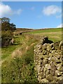 SE0154 : Dry stone wall on the path to Embsay Crag by Julian Osley