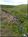 SN8556 : Nant-y-Fedw south of Drygarn-Fach, Powys by Roger  Kidd