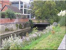 SP5206 : Napper's Bridge, St Catherine's College, Oxford by David Hawgood