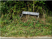 TM2490 : The Common sign by Adrian Cable
