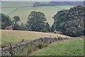 SJ9869 : Dry Stone Wall Above Banktop by Mick Garratt