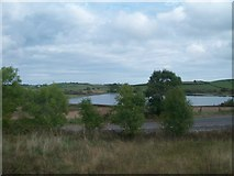 J3655 : Dairy Lough, north of Ballynahinch by Eric Jones