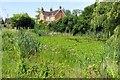 SP6423 : Overgrown pond in Marsh Gibbon by Steve Daniels