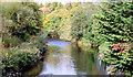 J3269 : The River Lagan, Newforge, Belfast (October 2014) by Albert Bridge
