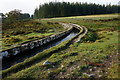 SX5671 : Devonport Leat by jeff collins