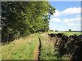 SE0635 : Bridleway east of Manywells Height by John Slater