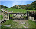 NY5100 : Bridleway leading to Nether House Farm by Chris Heaton