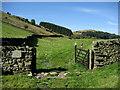 SD5199 : Bridleway in Longsleddale by Chris Heaton
