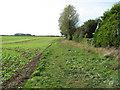 TG1434 : Fields south of Matlaske by Evelyn Simak