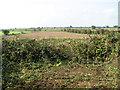TG1434 : Fields south of Matlaske Gap by Evelyn Simak