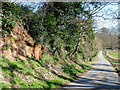 SO7596 : The lane to Worfield, Shropshire by Roger  Kidd