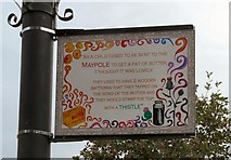 SJ8889 : Edgeley Lamppost: Sent to the Maypole by Gerald England