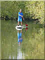 TM0733 : On the River Stour at Flatford by Chris Allen