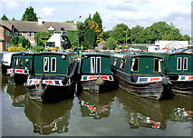 SJ9922 : Hire boats at Great Haywood, Staffordshire by Roger  Kidd
