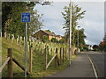 NT1178 : Society Road - End of Cycle Route sign by M J Richardson