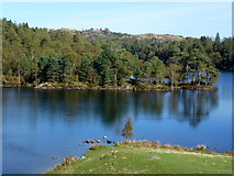 SD3299 : Tarn Hows by John H Darch