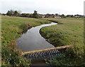 SJ5328 : River Roden, Aston by Jaggery