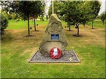 SK1814 : Mercian Grove, National Memorial Arboretum by David Dixon