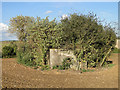 TL9151 : Unique trefoil pillbox Part of the Eastern Command Stop-line by Adrian S Pye