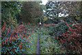 SK4193 : Rotherham Roundwalk towards Fenton Road by Ian S
