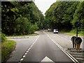 SU4963 : A339, Greenham Common by David Dixon