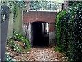 SU8384 : Temple, Subway by Bikeboy
