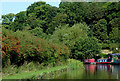 SJ9627 : Canal east of Salt, Staffordshire by Roger  Kidd