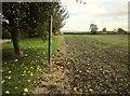 SK7130 : Path by Roses Farm by Derek Harper
