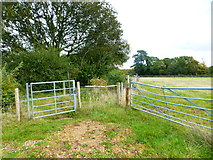 SU7209 : Gate on bridleway in Staunton Country Park by Shazz