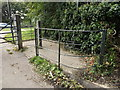 TG1908 : Kissing Gate near St.Mary's Church by Adrian Cable