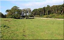 NU1834 : Northumberland Coast Path approaching Bamburgh by Chris Heaton