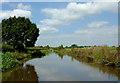 SJ9231 : Canal near Aston Marina, Staffordshire by Roger  Kidd