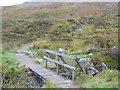 NN2256 : West Highland Way at Altnafeadh by Dave Kelly