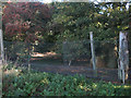 TL3434 : Pheasant pen, Brandish Wood by Hugh Venables
