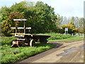 TL4674 : Trailer on Hoghill Drove near Haddenham by Richard Humphrey