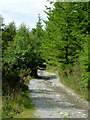 SN7664 : Ancient byway north-east of Strata Florida, Ceredigion by Roger  Kidd