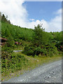 SN7664 : Forestry road and byway near Strata Florida, Ceredigion by Roger  Kidd